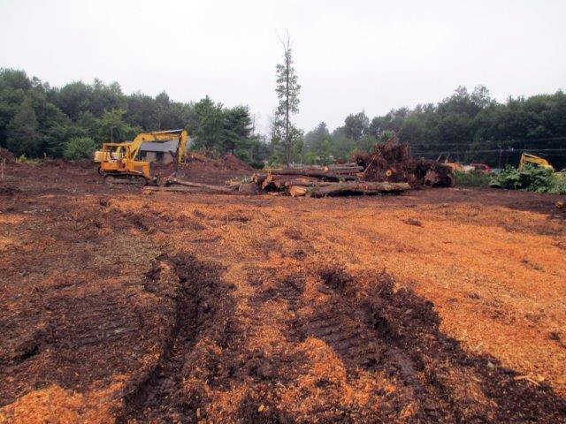 Site preparation for the Dollar General in Blakeslee