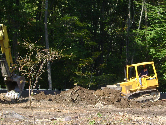 Evergreen subdivision site work